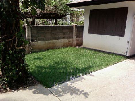 Grasscrete4